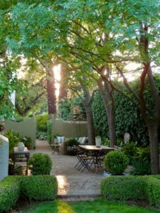 Shade trees in a beautiful patio space. Source: Ladolcevitacalifornia.com
