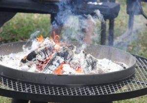 Pinon Mini Logs Fire Pit