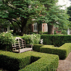 Boxwood Hedge. Source: BHG.com
