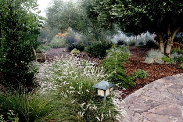 California Winter Garden. Source: Minimalisti