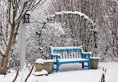 Cheerful Garden Bench in Winter Snow. Source: University of Wisconsin Master Gardener Program