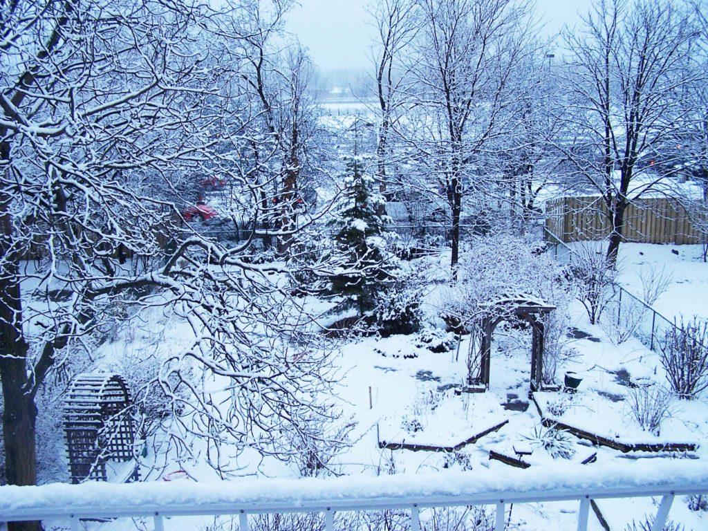 Garden Under Snow. Source: California School of Garden Design