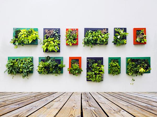 Picture Framed Vertical Garden Source: Dripworks