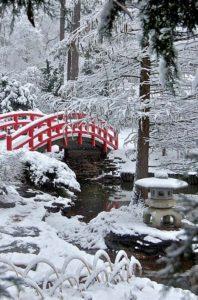Red Bridge in Frozen Japanese Garden