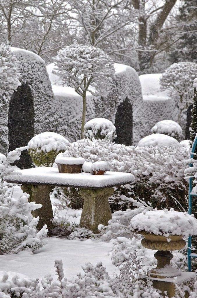 Snowy Garden in Winter. Source: SeasonalWonderment