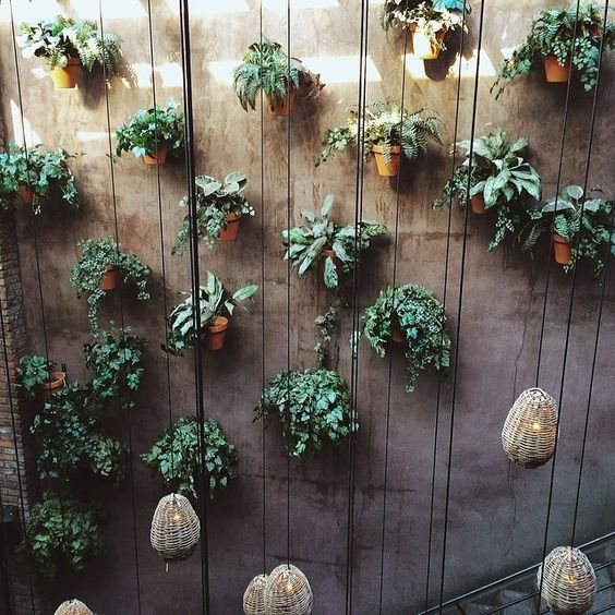 Suspended Plants and Pendants Source Instagram