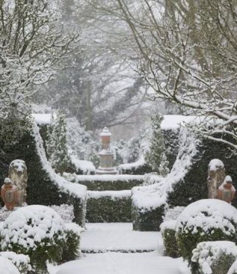 Symmetry in the Snowy Garden. Source: The Potted Boxwood