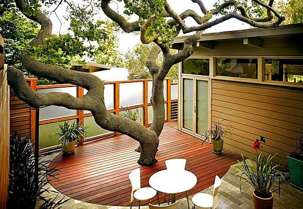 Tree Through Modern Deck. Source: Felamakita