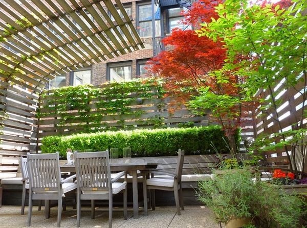 Vines along patio walls. Source: HomeEdit