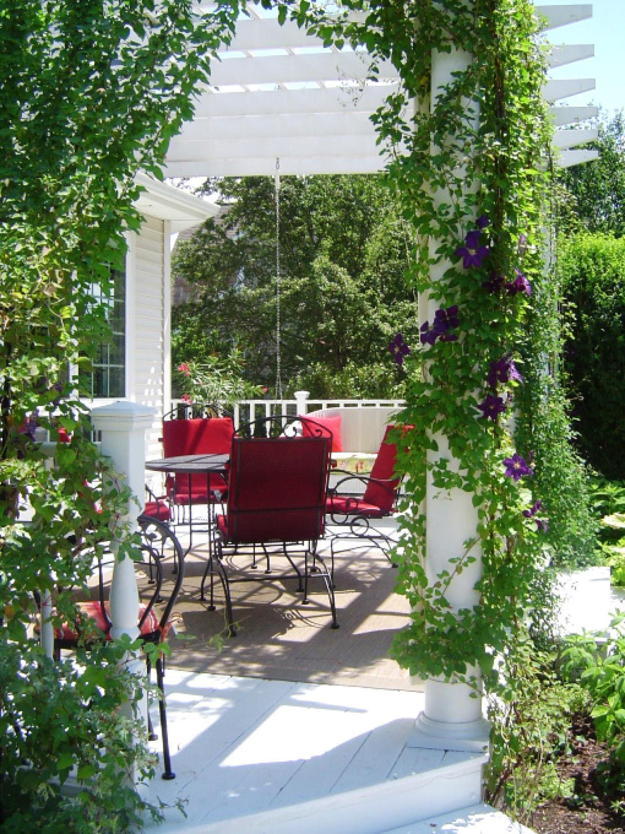 Vines on White Painted Pergola. Source: HGTV