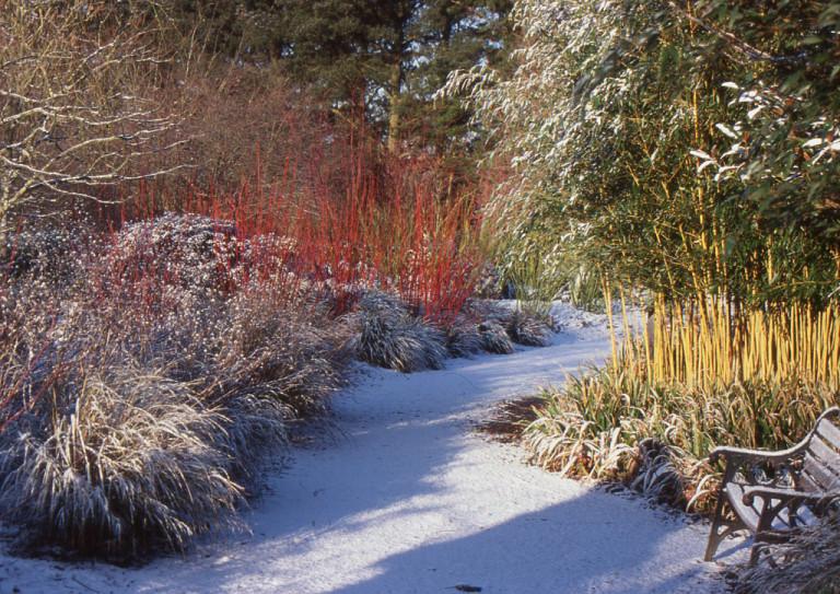 Winter Garden at Sir Harold Hilier Gardens. Source: MyCityIsAGarden