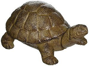 Design Toscano Aesop S Turtle Cast Iron Statue