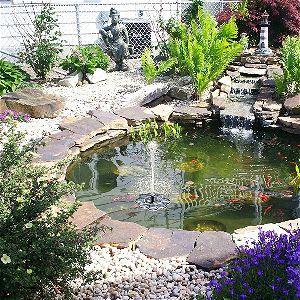 TekHome in the Koi Pond