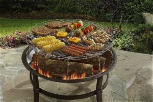 Fire Pit Grates For Cooking Outsidemodern