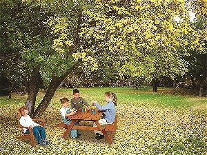 Maxim Kids Adirondack Chair in Context