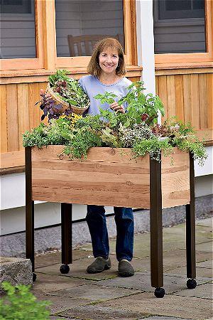Gardeners Supply Elevated Raised Planter Box