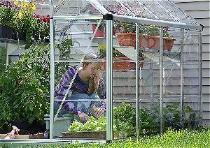 Palram Snap & Grow 6ft Series Hobby Greenhouse