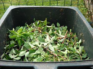 Garden Waste source: pixabay