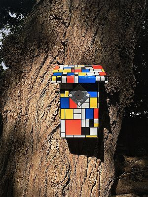 Pop-Up Garden Modern Bird House Kit, the best modern birdhouse