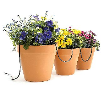 Raindrip R560DP Automatic Container and Hanging Baskets Irrigation System