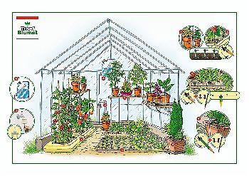 Tropft Blumat in the Greenhouse