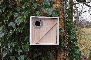 Wildlife World Urban Nest Box
