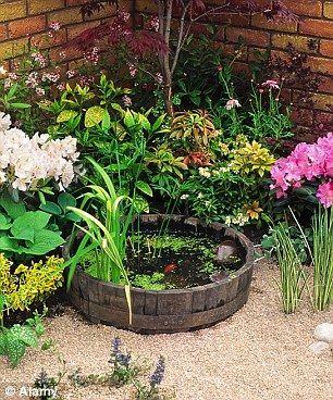 Ten Awesome Small Backyard Pond Ideas Outsidemodern
