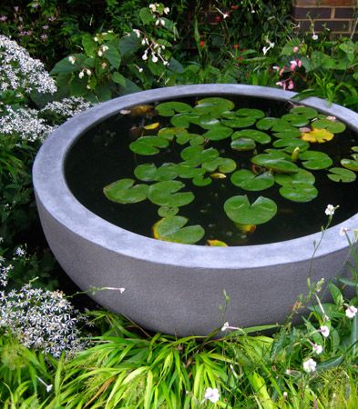 The Big Bad Bowl small backyard pond ideas