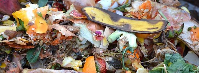Winter Composting Tips Source: Pixabay