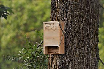 Applewood Outdoor Premium Bat House