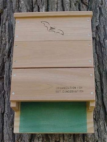 Looker Products Triple Chamber Bat House, the Best Bat House