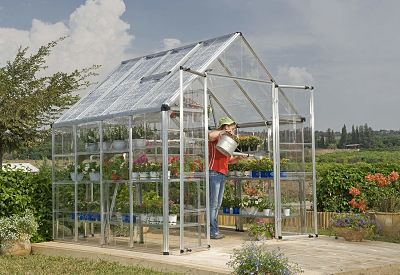 Palram 8x8 Greenhouse with Plants