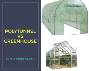 Polytunnel vs Greenhouse