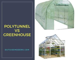 Polytunnel vs Greenhouse