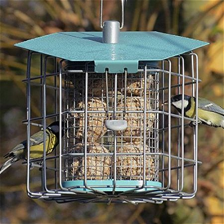 Birds Dining at the Nuttery NC001 Suet Feeder