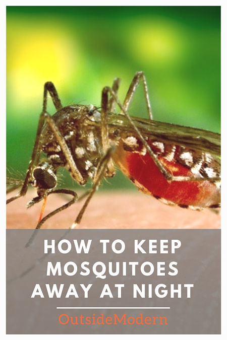 How to Keep Mosquitoes Away At Night