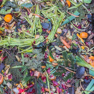 Compost Plants
