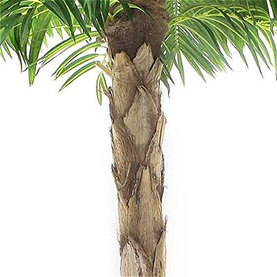 Vogue Plants Quality Artificial Peruvian Palm Tree Trunk Detail
