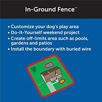 In Ground Fence Systems