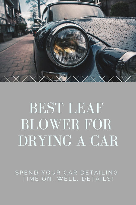 best leaf blower for drying car