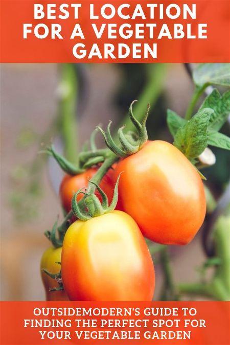 best location for vegetable garden