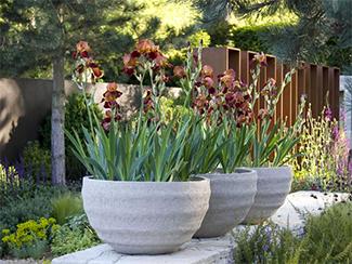 best large planters